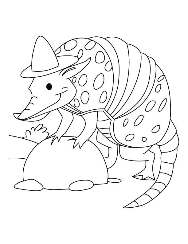 Armadillo In Hat Coloring Page
