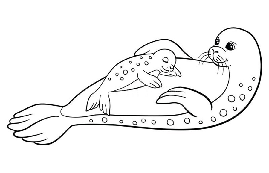 Mom And Baby Seal Coloring Pages